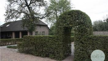 studiofortuin-boerderijtuin-13