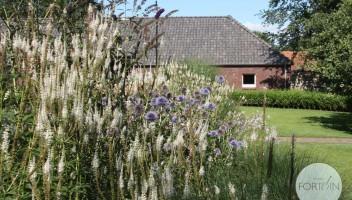 studiofortuin-landschappelijke-tuin-10