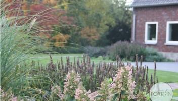 studiofortuin-landschappelijke-tuin-7